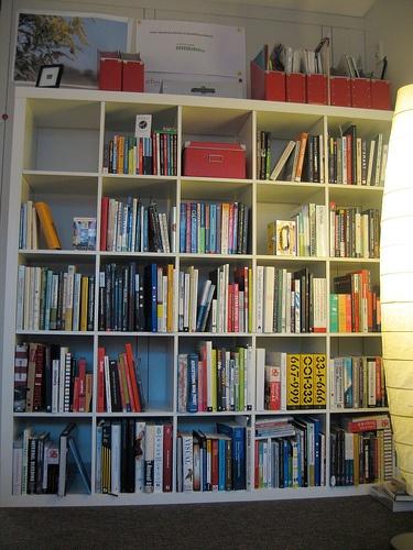Daycare Bookshelf